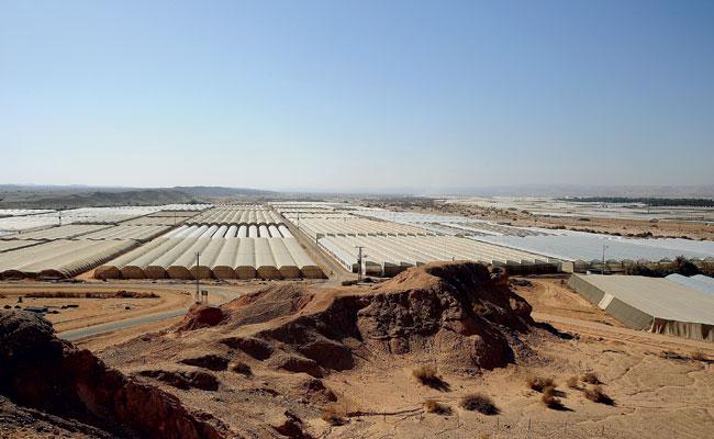 Hatzeva Israel  city pictures gallery : Estufas do Moshav Hatzeva, no deserto de Arava, sul de Israel.